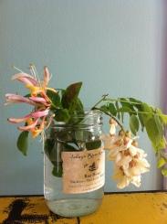 honeysuckle locust in jar