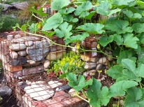 gabions (rock-filled metal cages) and squash vines
