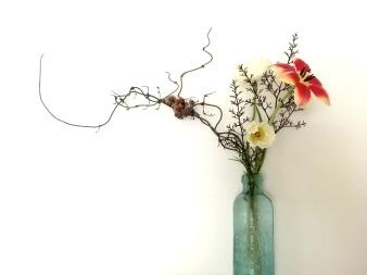 bottle-hops-tulip